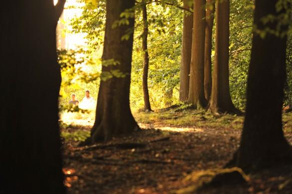 forêt_métropole_rouen