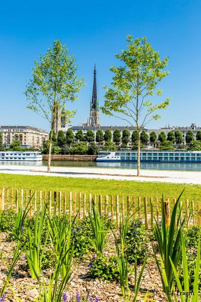quais rive gauche Rouen