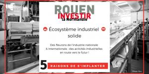 Rouen-écosysteme-industriel-solide