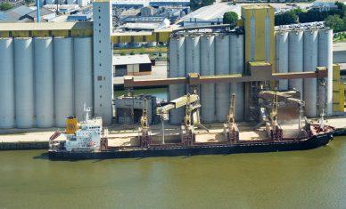 Port de Rouen : belle reprise pour la campagne céréalière