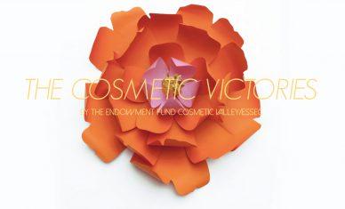 Candidatez aux Cosmetic Victories !